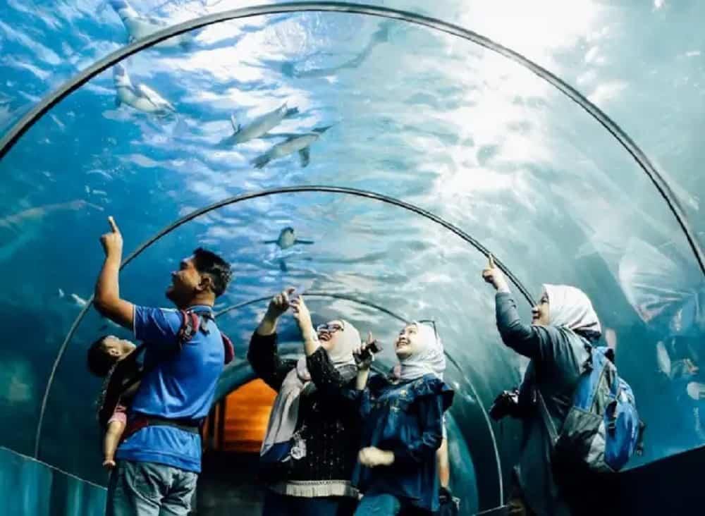 Harga Tiket Underwater World Langkawi [TERKINI]